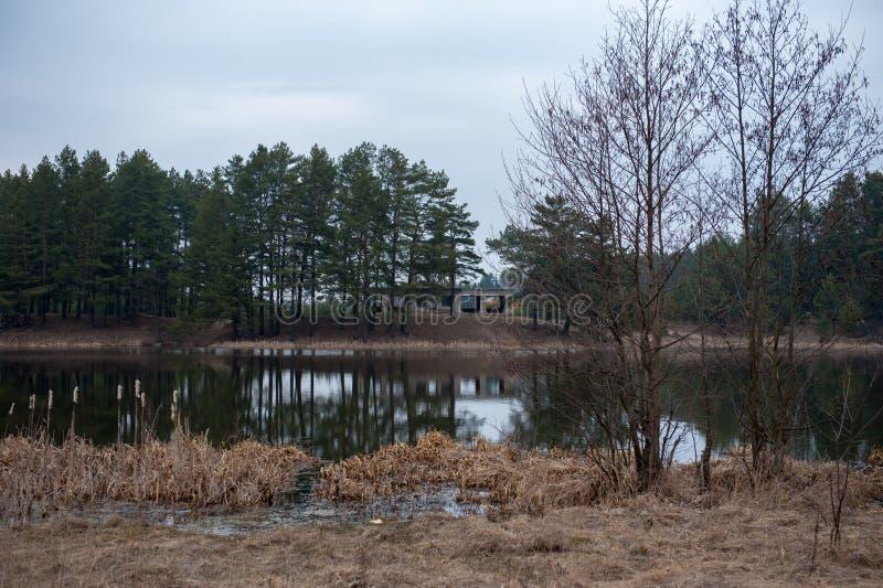 Gefährdete Natur, die Überreste eines Gebäudes auf dem Ufer lizenzfreie stockfotos
