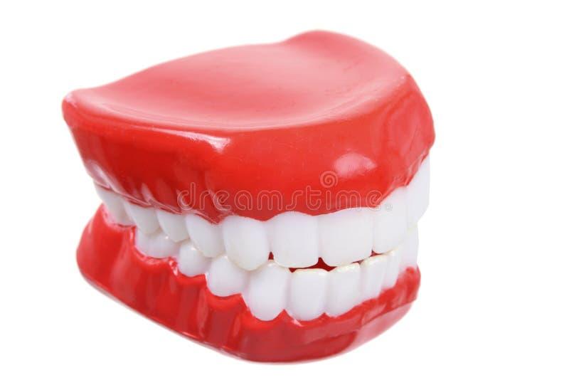 Gefälschte Zähne lizenzfreie stockfotos