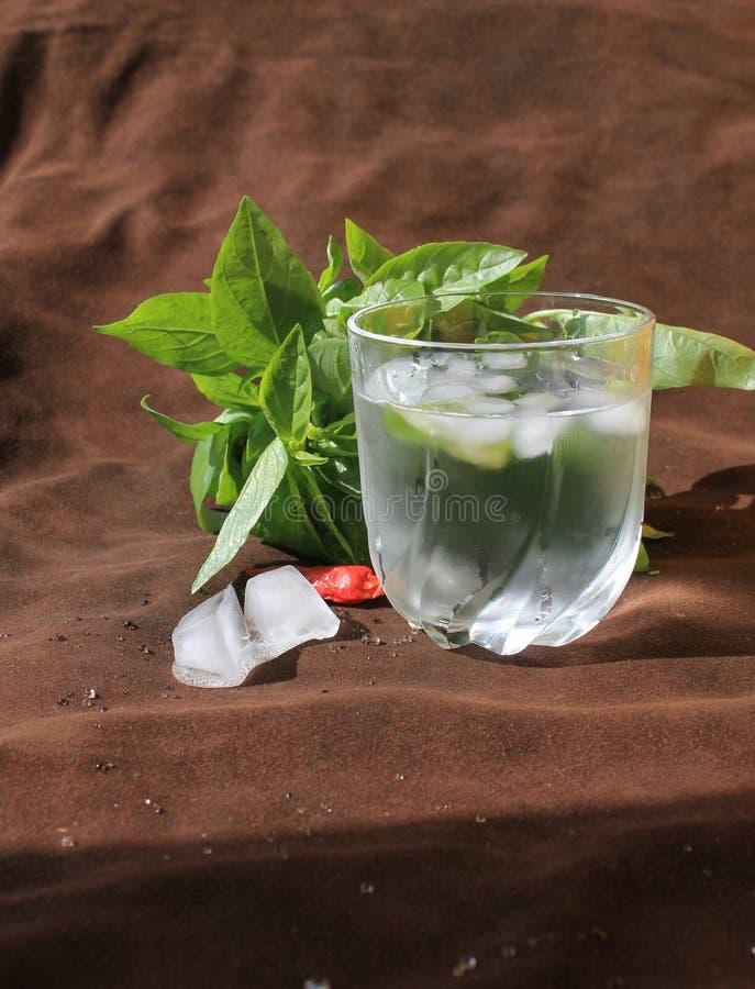 Gefälschtes Glas Wasser an heißem Sonntag saftige Basilika, Eis, Pfeffer und braunes Leder stockbild