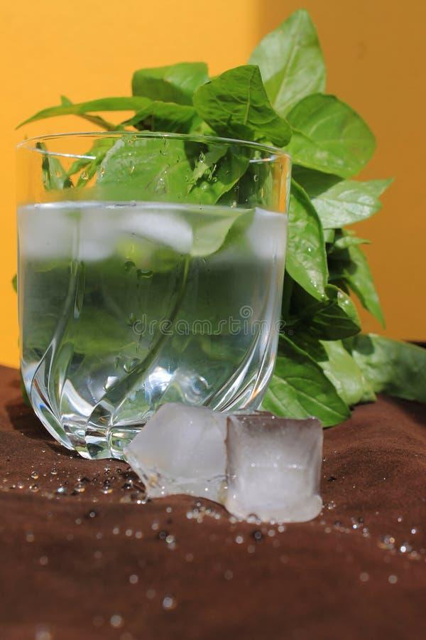 Gefälschtes Glas Wasser an heißem Sonntag saftige Basilika, Eis und gelbe Wand lizenzfreies stockfoto