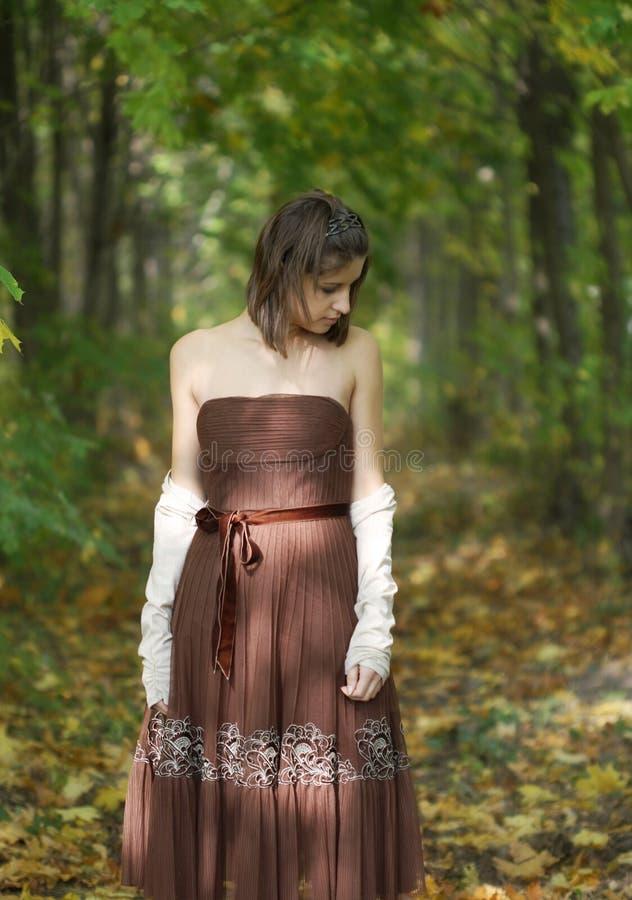 Gefühls-Herbst stockfotografie