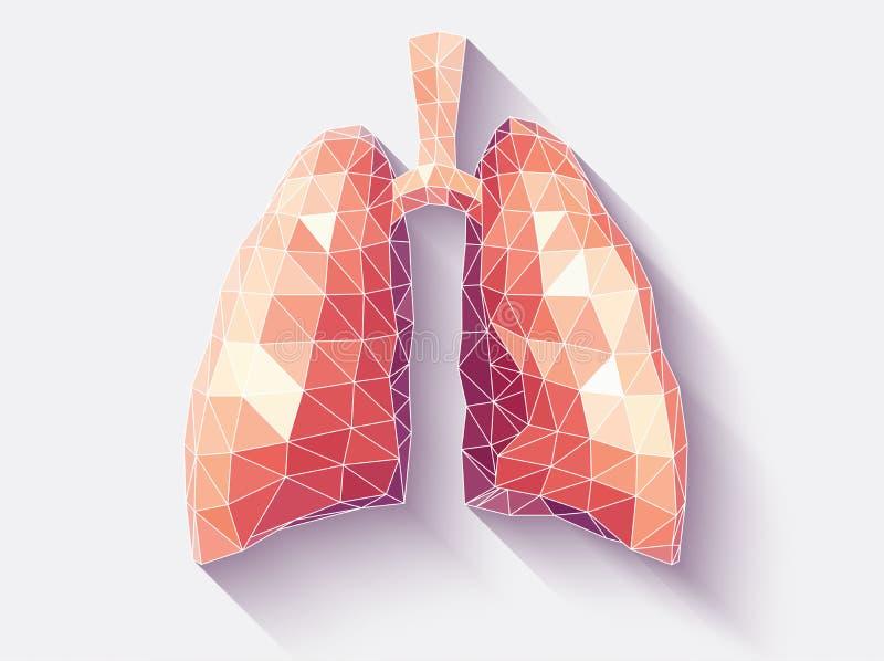 Gefacetteerde longen stock illustratie