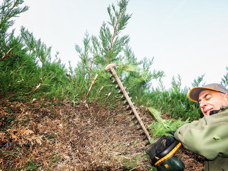 Gefahr der Gartenarbeitarbeit über Zutat Ein Mann schließt seine Augen von einem unerwarteten Schlag von Fliegenniederlassungen lizenzfreie stockbilder