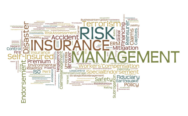 Gefahr-u. Versicherungs-Management-Wort-Wolke vektor abbildung