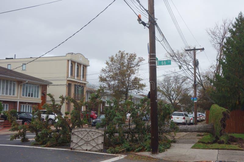Gefallener Baum beschädigte Haus in der Zeit nach Hurrikan Sandy in Brooklyn, New York stockbilder
