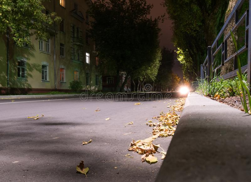Gefallenes trockenes Herbstgelb verlässt, Nachtstraße im Herbst, in Europa, Kleinstadt, Nachtlampen lizenzfreies stockbild
