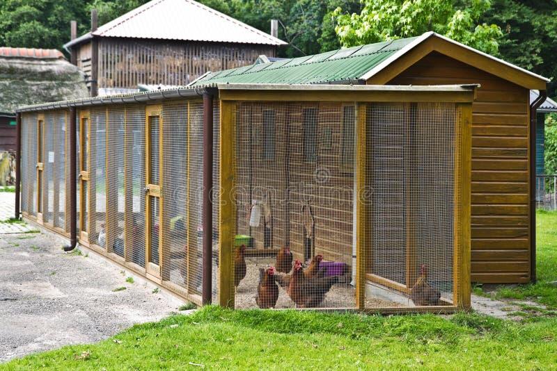 Geflügellack-läufer, zum des Huhns für zu schützen lizenzfreie stockfotos