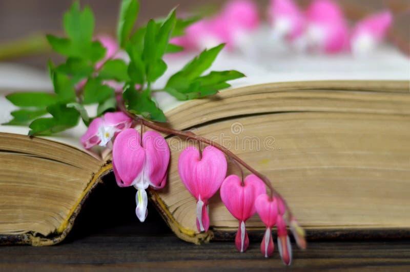 Geformte Blume des Herzens auf dem Buch stockfotos