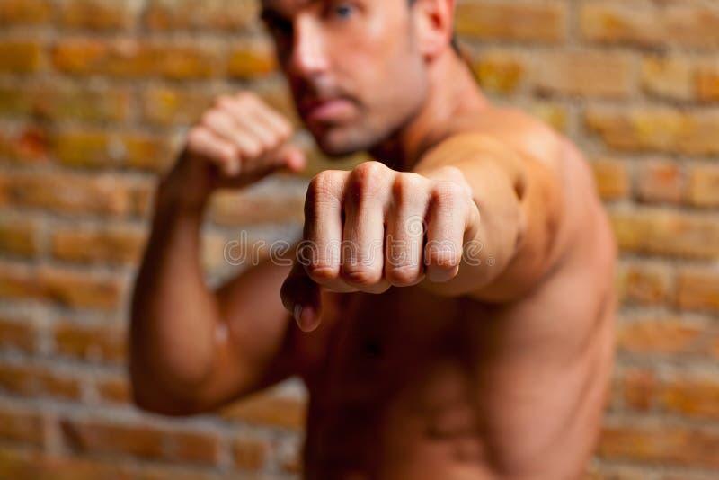 Geformte Mannfaust des Muskelboxers zur Kamera stockbilder