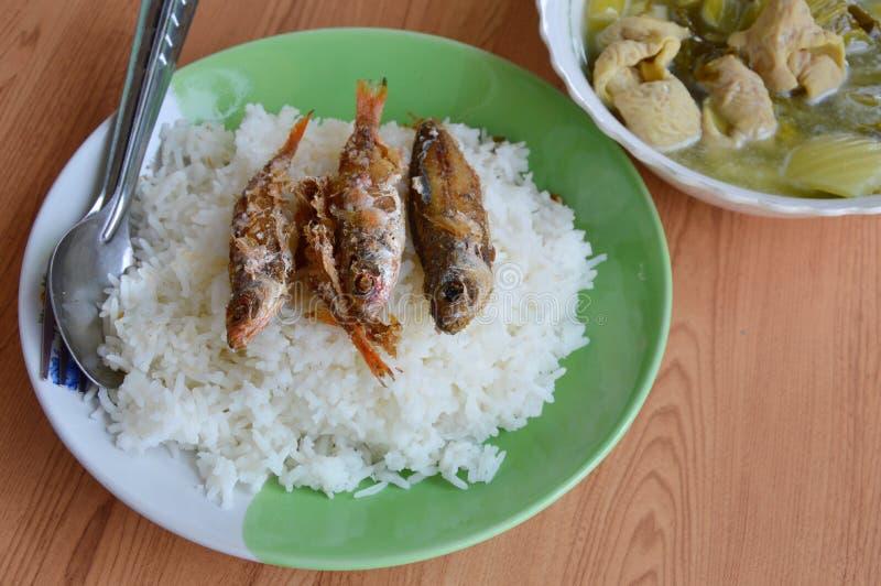 Gefrituurd vissenbovenste laagje op rijst en ingelegde Chinese kool met de soep van varkensvleesingewanden stock afbeelding