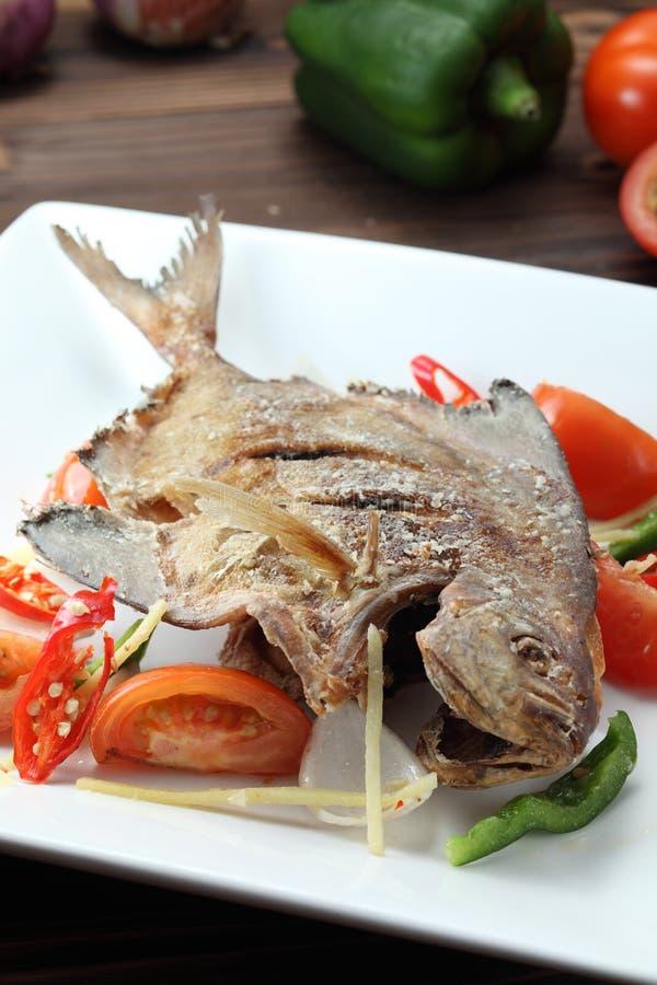 Download Gefrituurde vissen stock afbeelding. Afbeelding bestaande uit tomaat - 22550911