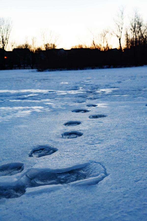 Gefrorene Abdrücke über dem Teich, der in Richtung zum Wintersonnenuntergang führt stockfoto