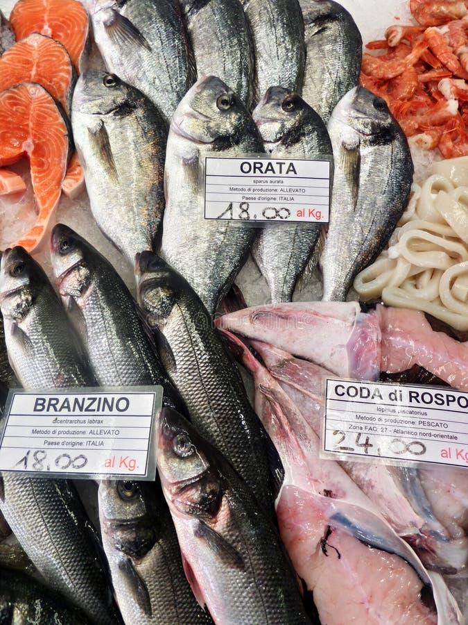 Gefrorene Fische auf Eis lizenzfreies stockbild