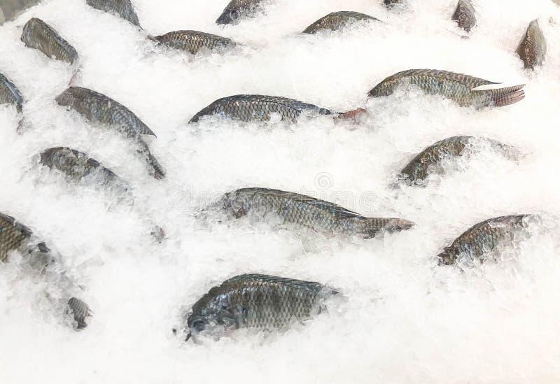 Gefrorene Fische bereiten für Verkauf am Markt vor stockfotografie