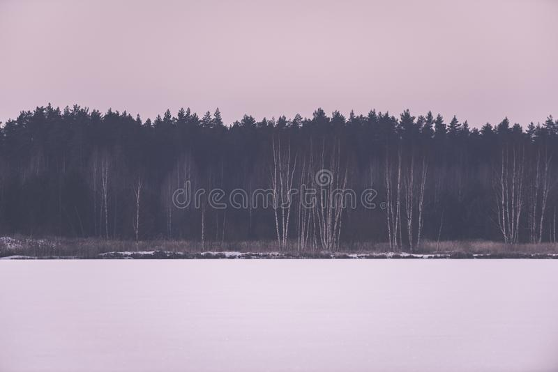 gefrorene nackte Bäume des Waldes in der schneebedeckten Landschaft - Retro- EFF der Weinlese stockbilder