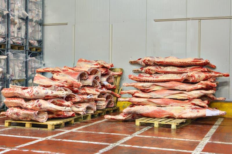 Gefrorene Rindfleischkarkassen werden auf Paletten für Kühlraum gestapelt lizenzfreie stockbilder
