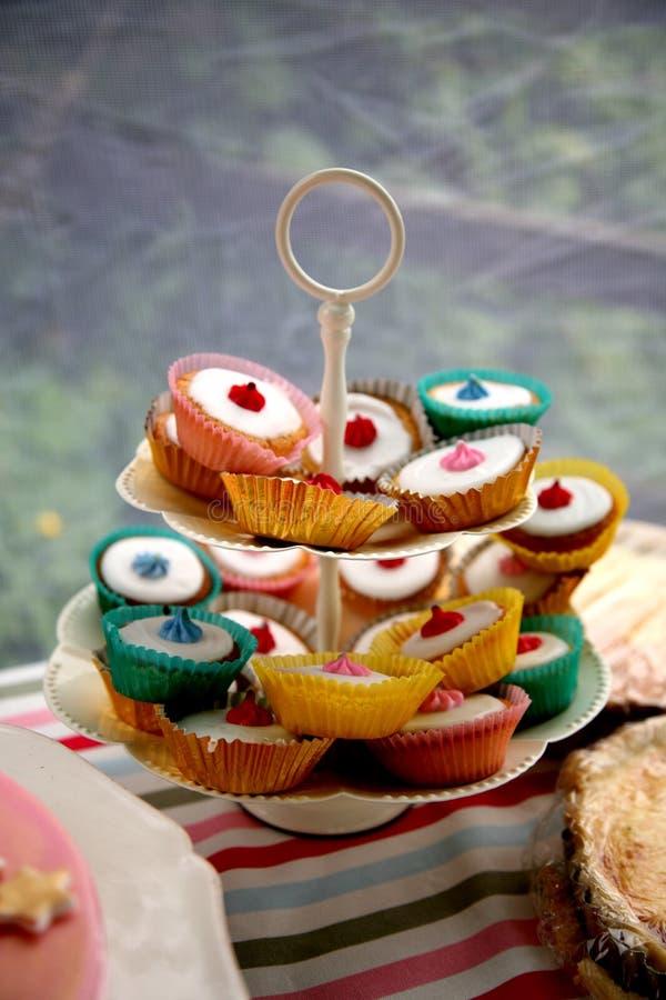 Gefrorene Tee-Kuchen stockfotografie