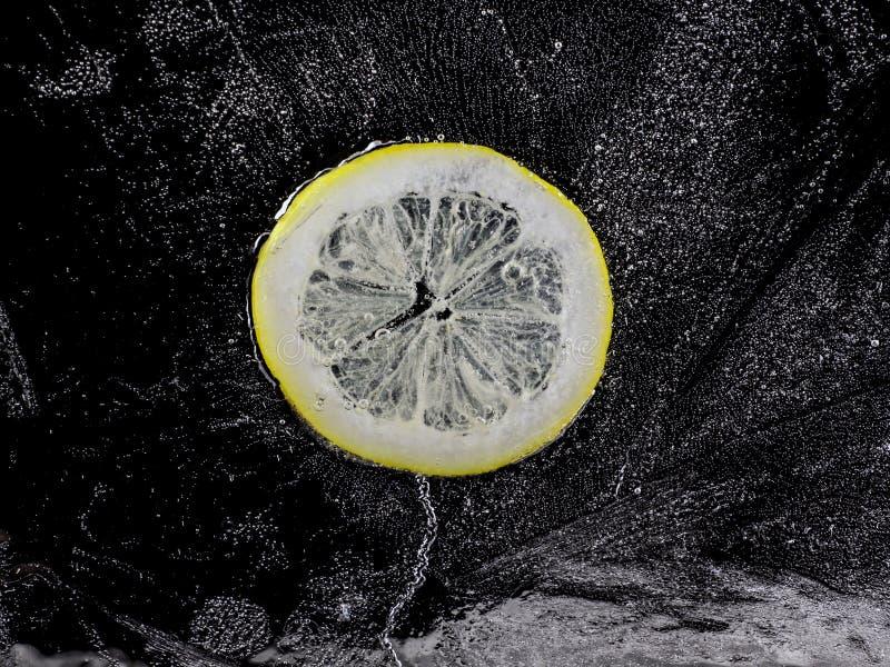 Gefrorene Zitrone lizenzfreies stockbild