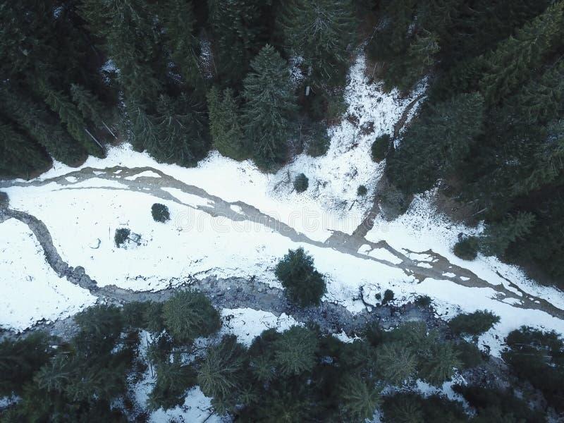Gefrorener Fluss in der Waldvogelperspektive lizenzfreies stockfoto