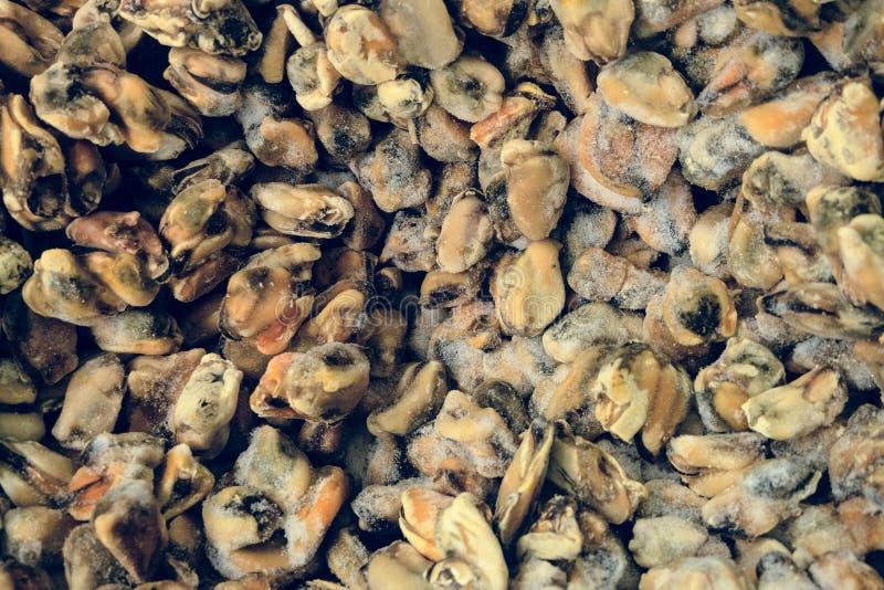Gefrorener roher natürlicher Miesmuschelhintergrund im Markt lizenzfreies stockbild
