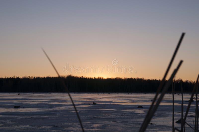 Gefrorener Sonnenaufgang lizenzfreie stockfotos