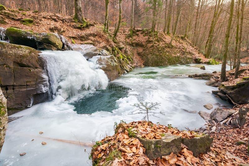 Gefrorener Wasserfall im Wald lizenzfreie stockbilder