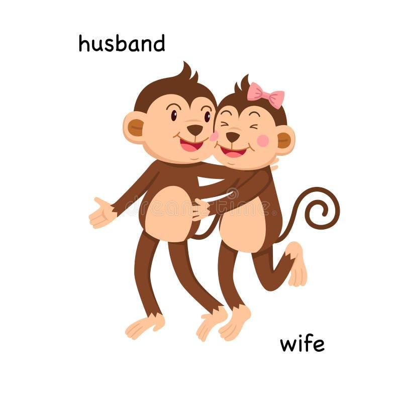 Gegenüberliegender Ehemann und Frau lizenzfreie abbildung