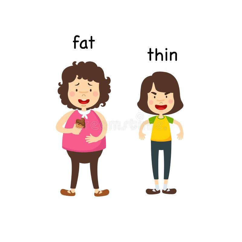 Gegenüberliegendes fettes und dünn lizenzfreie abbildung