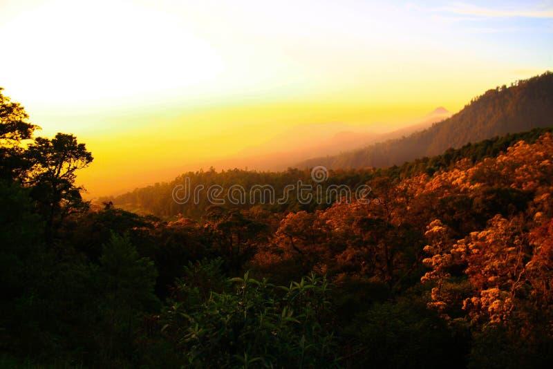 Gegenüberstellen eines neuen Tages vom Berg Lawu lizenzfreie stockbilder