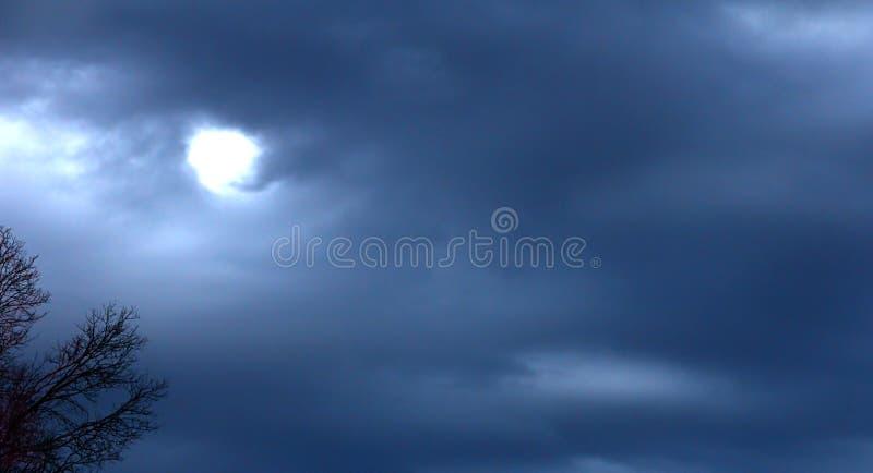 Gegen einen Danksagungs-Himmel stockbilder
