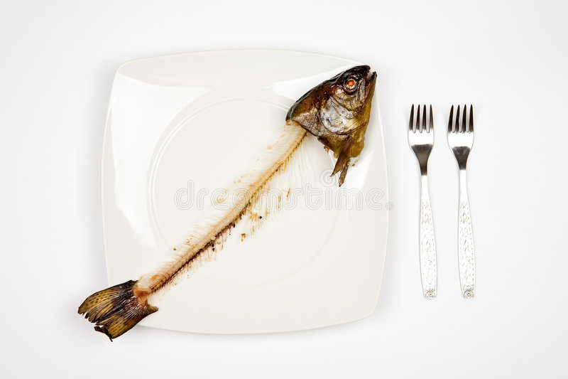 Gegessene Fische stockbild