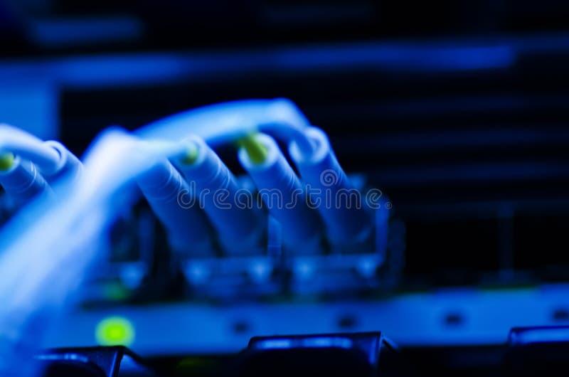 Gegevensoverdracht door optische vezel op de schakelaar van het kernnetwerk selectief stock afbeeldingen