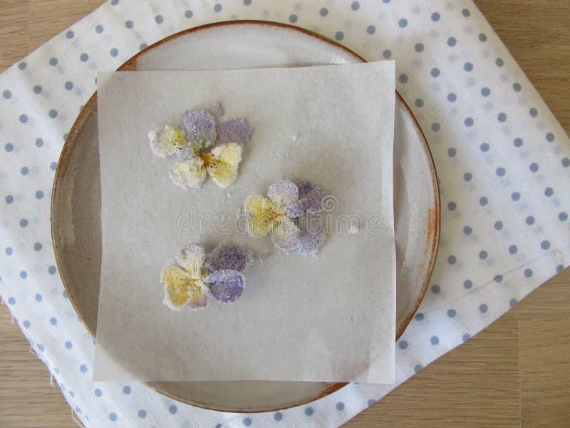 Geglaceerd gehoornd viooltje stock foto