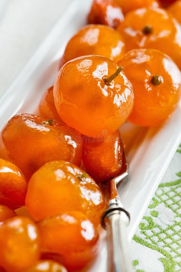 Geglaceerde citrusvruchten stock afbeelding