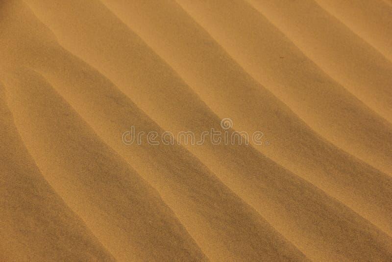 Gegolft zand in de woestijn stock foto's