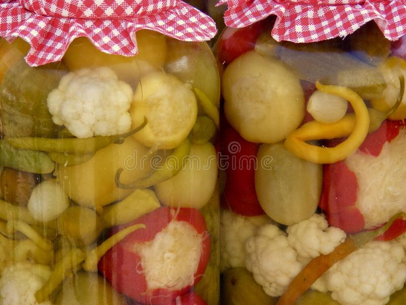 Gegorene ungarische Mischung Veggies lizenzfreies stockbild