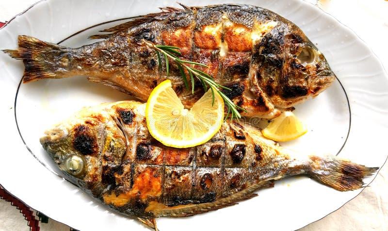 Gegrillte Fische, Seebrassen, dorada auf der Platte lizenzfreies stockbild