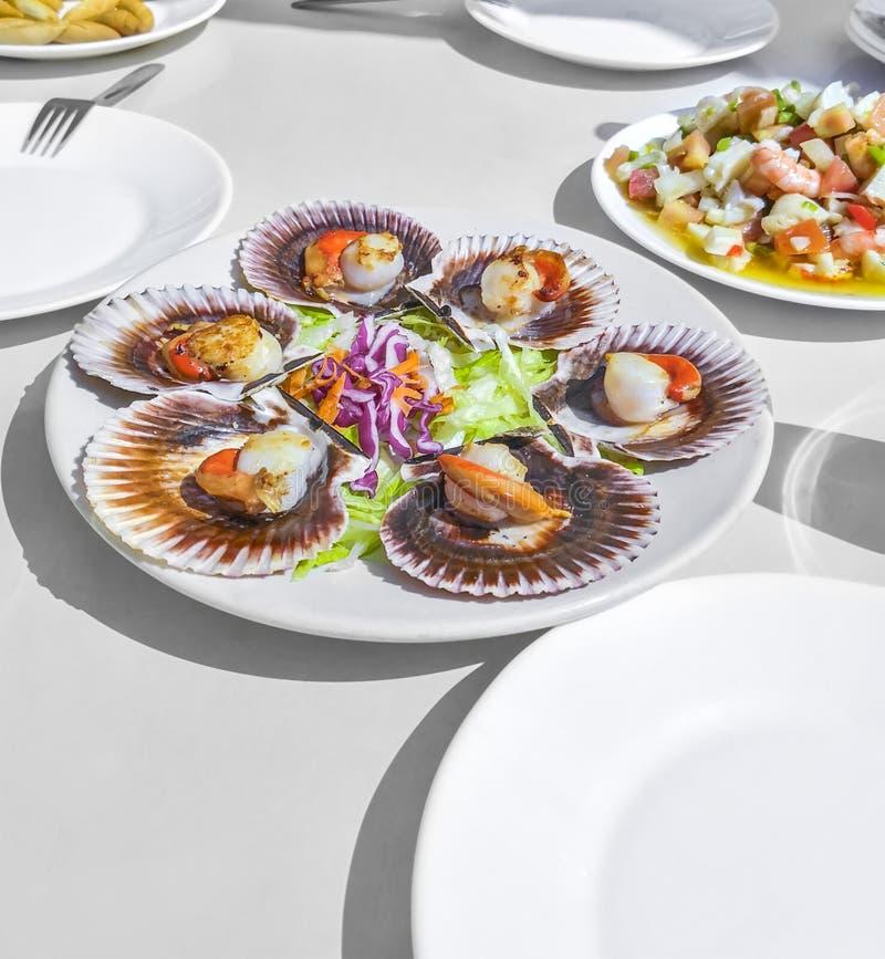 Gegrillte galizische Kammmuscheln, Meeresfr?chtesalat und Wei?wein auf wei?em backgound Iberische veränderte Kammmuscheln Zamburi lizenzfreies stockbild