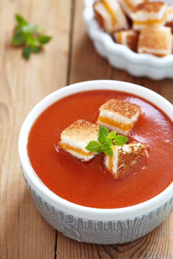 Gegrillte Käse-Croutons in gebratener Tomaten-Suppe lizenzfreie stockbilder
