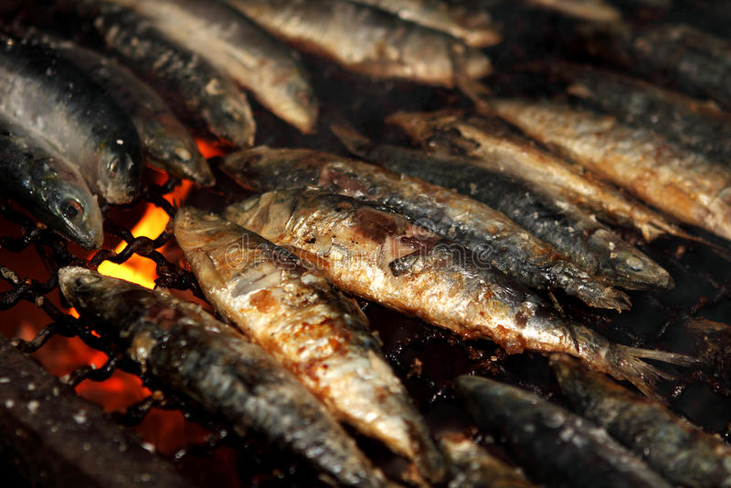 Gegrillte Sardinen stockfoto