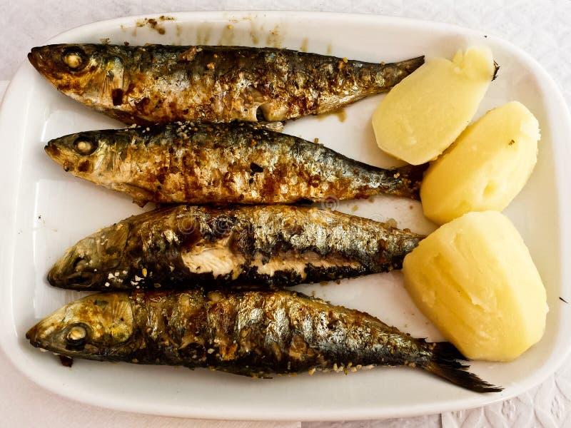 Gegrillte Sardinen-Platte mit Kartoffel lizenzfreie stockfotografie