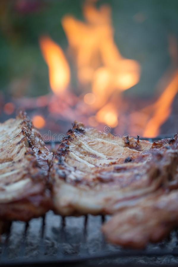 Gegrillter Grillhafen Kochen im Freien Marinated grillte Rippen Nettes neues Lebensmittel und Korb auf dem Gras Kochen des Abende stockbilder