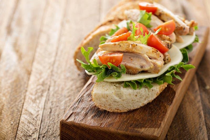 Gegrilltes belegtes Brot mit Hühnerfleisch mit Basilikum und Tomaten lizenzfreie stockfotografie