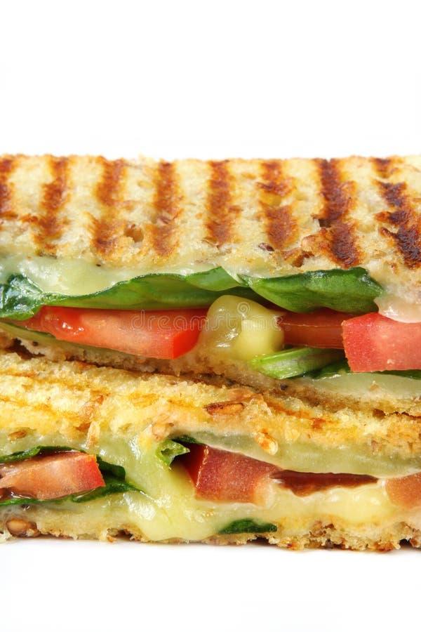 Gegrilltes Sandwich lizenzfreie stockbilder