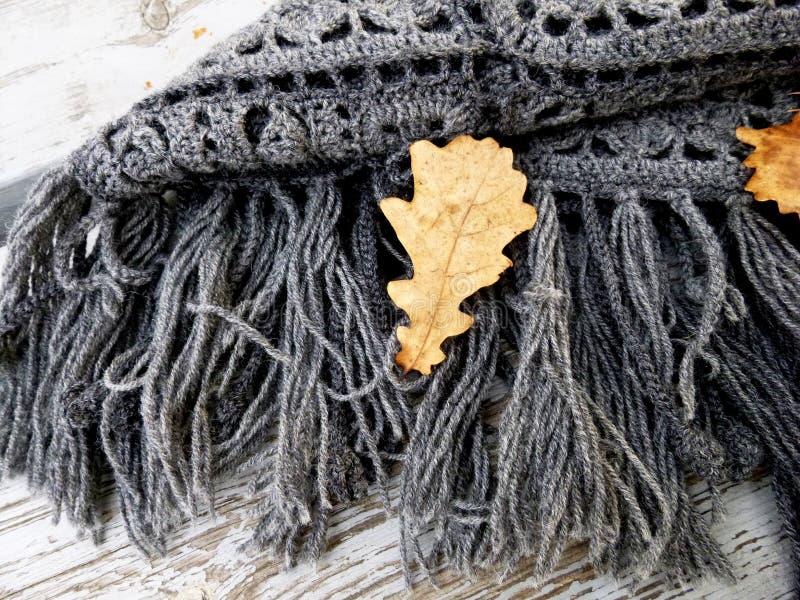 Gehaakte grijze sjaal die op een bank in het de herfstpark liggen Vierkante motieven Autumn Leaves stock foto's