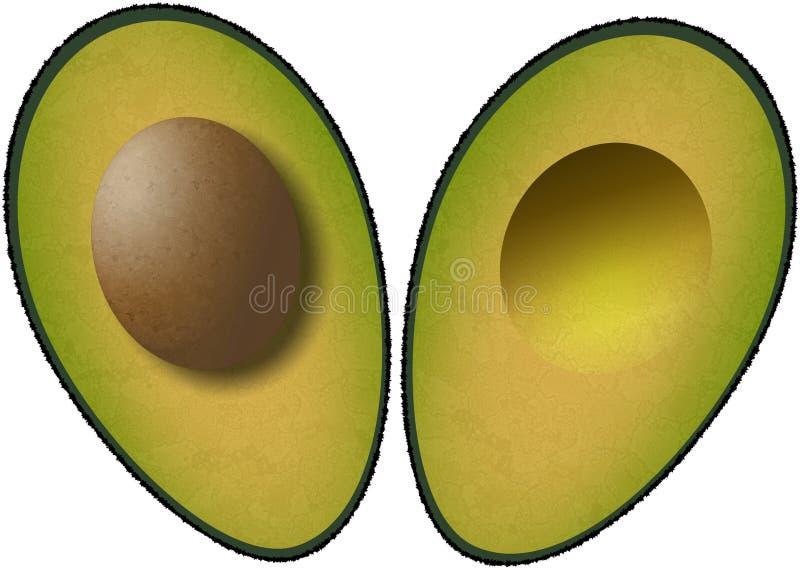 Gehalveerde avocado vector illustratie