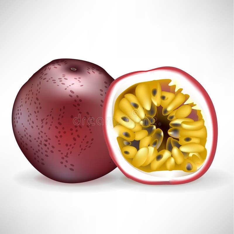 Geheel hartstochtsfruit en gesneden fruit vector illustratie
