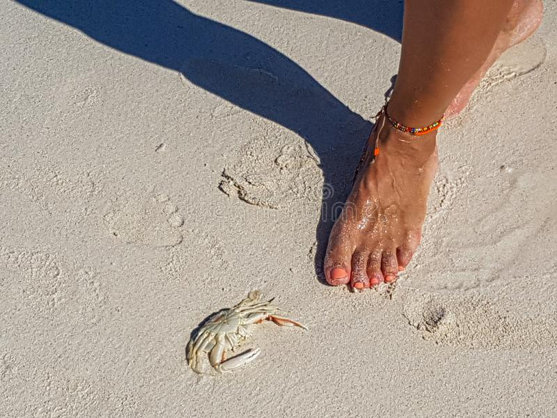 Geheim strand in Vinales, Cuba stock fotografie