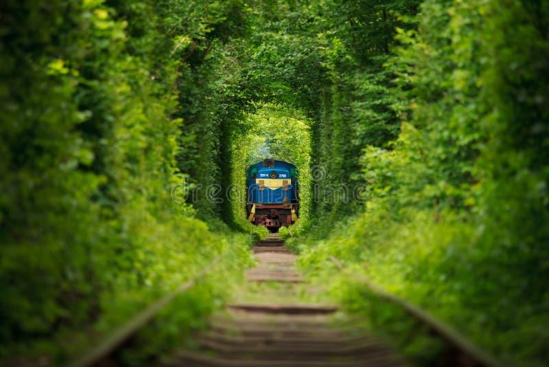 Geheime trein 'tunnel van liefde' in de Oekraïne De zomer stock foto