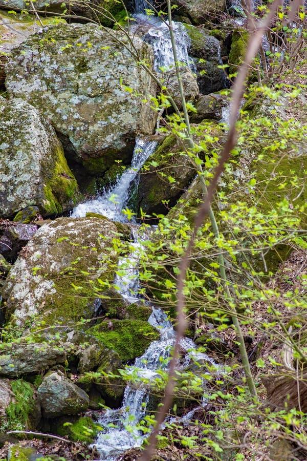 Geheimer Kaskadenwasserfall in blauen Ridge Mountains lizenzfreie stockbilder